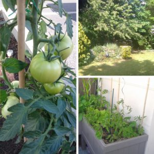 entretien agriculture urbaine
